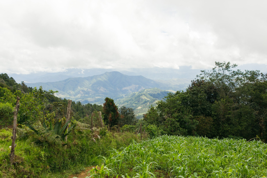 Guatemala04_SanAndres_LaCumbre_20190627-15